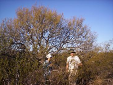 Valeria Aschero and Diego Vázquez working in Ñacuñán Biosphere Reserve. See Aschero et al. (2016) Forest Ecology & Management, Aschero et al. (2009) Austr. Ecol. and Vázquez et al. (2008) RSEA.